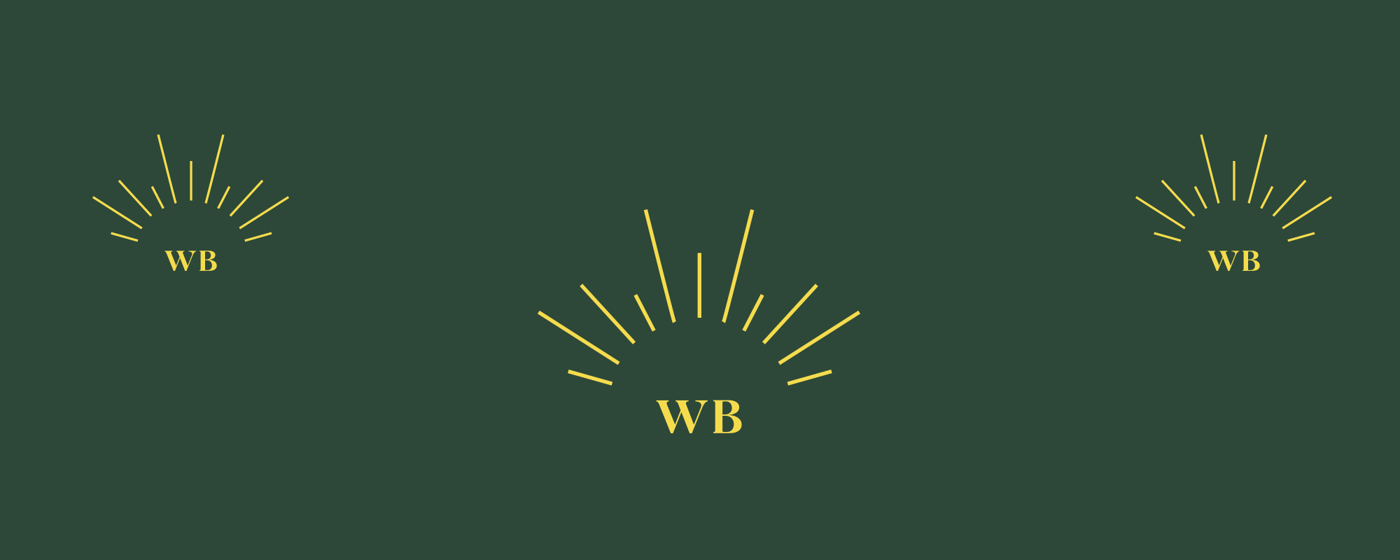 writebright co icon WB with line detail